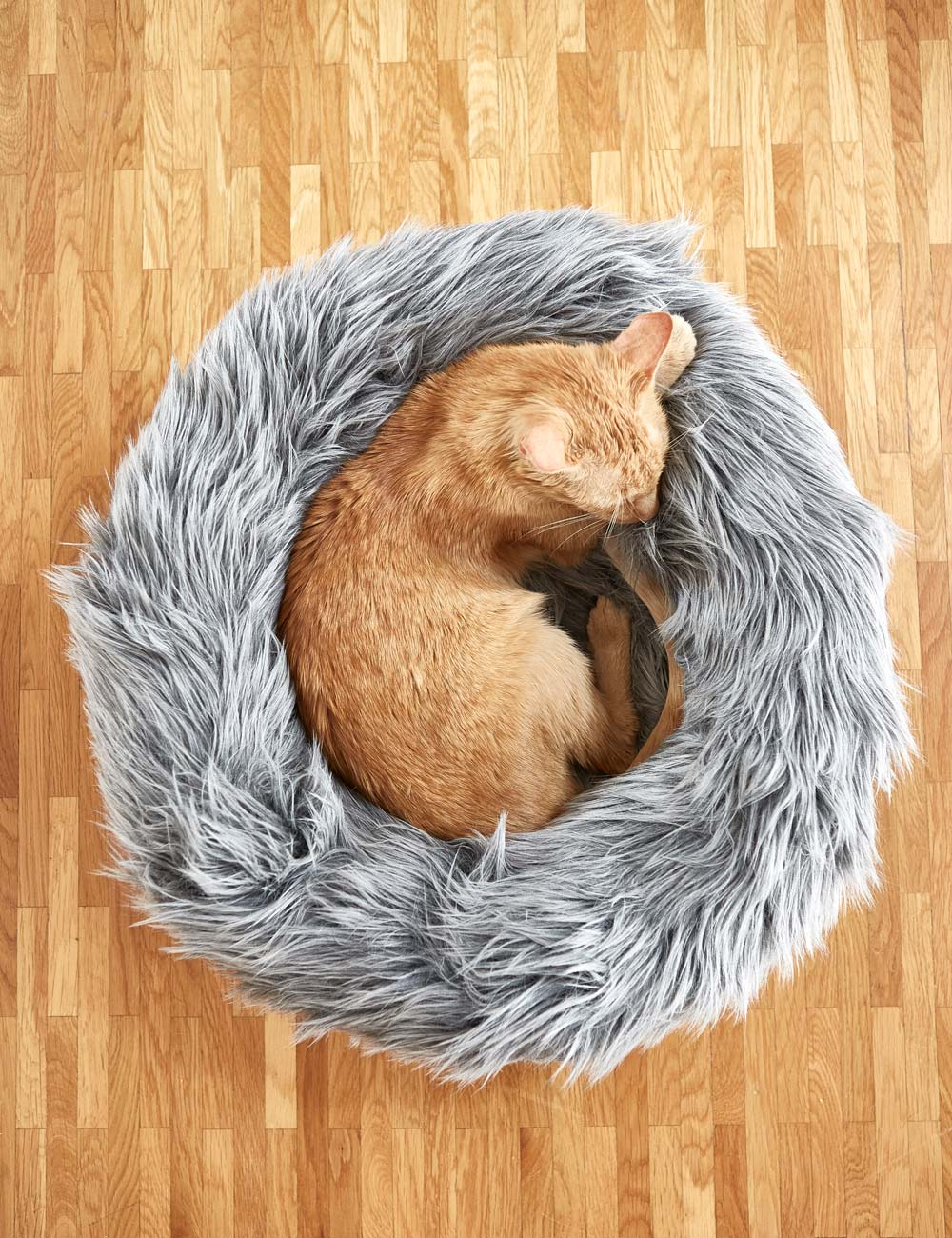 Capello Cat Bed | Grey & Black