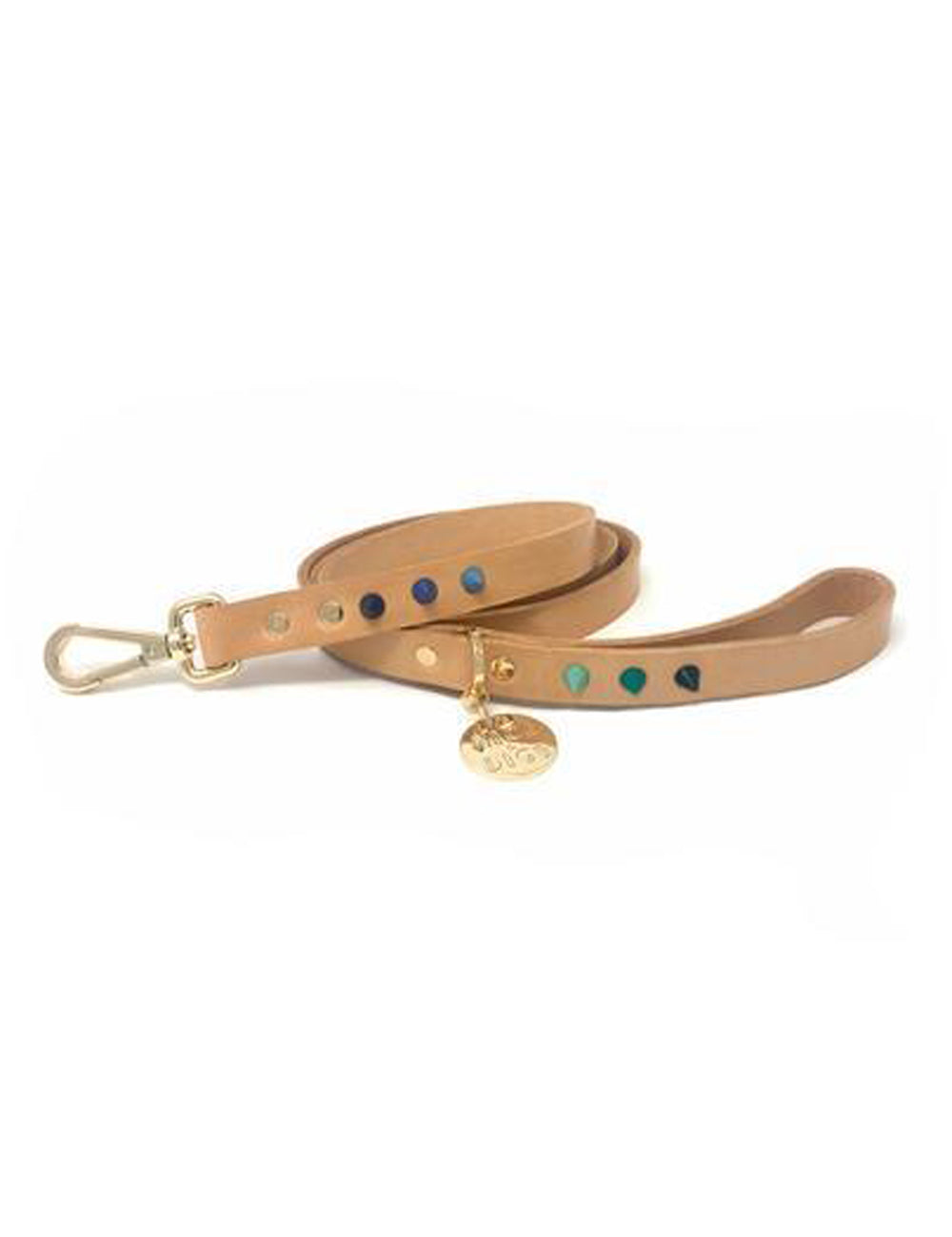 Spike Dog Leash | Blue