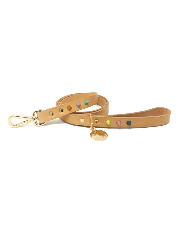 Spike Dog Leash | Blush