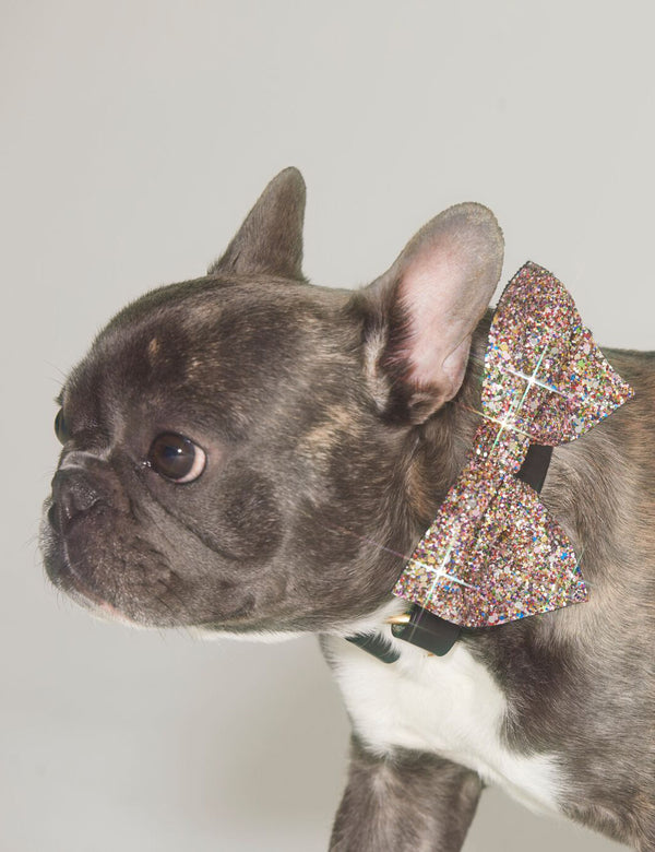 Glitter Bow Tie | Gold Multi