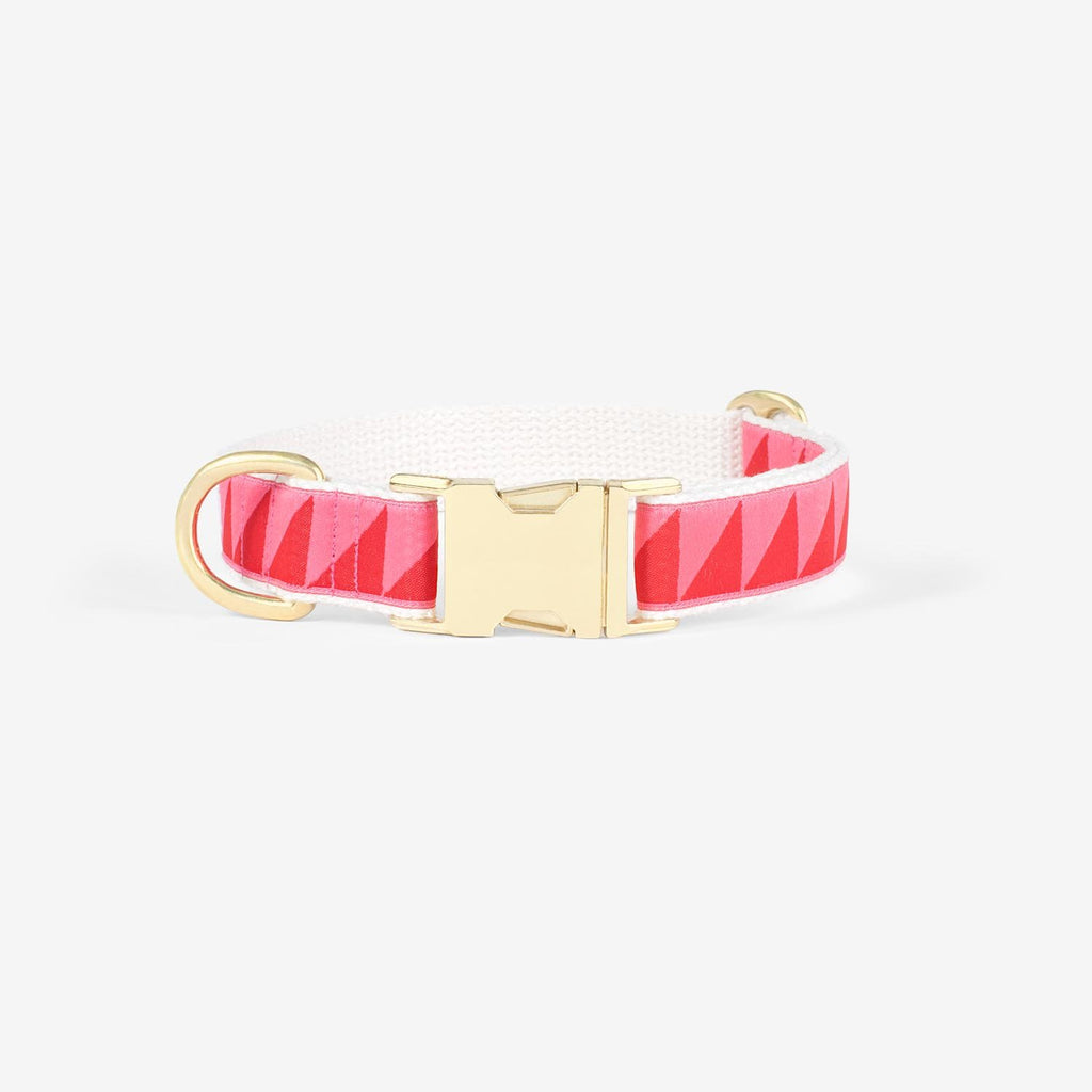 Nice Grill Collar | Ruby & Hot Pink