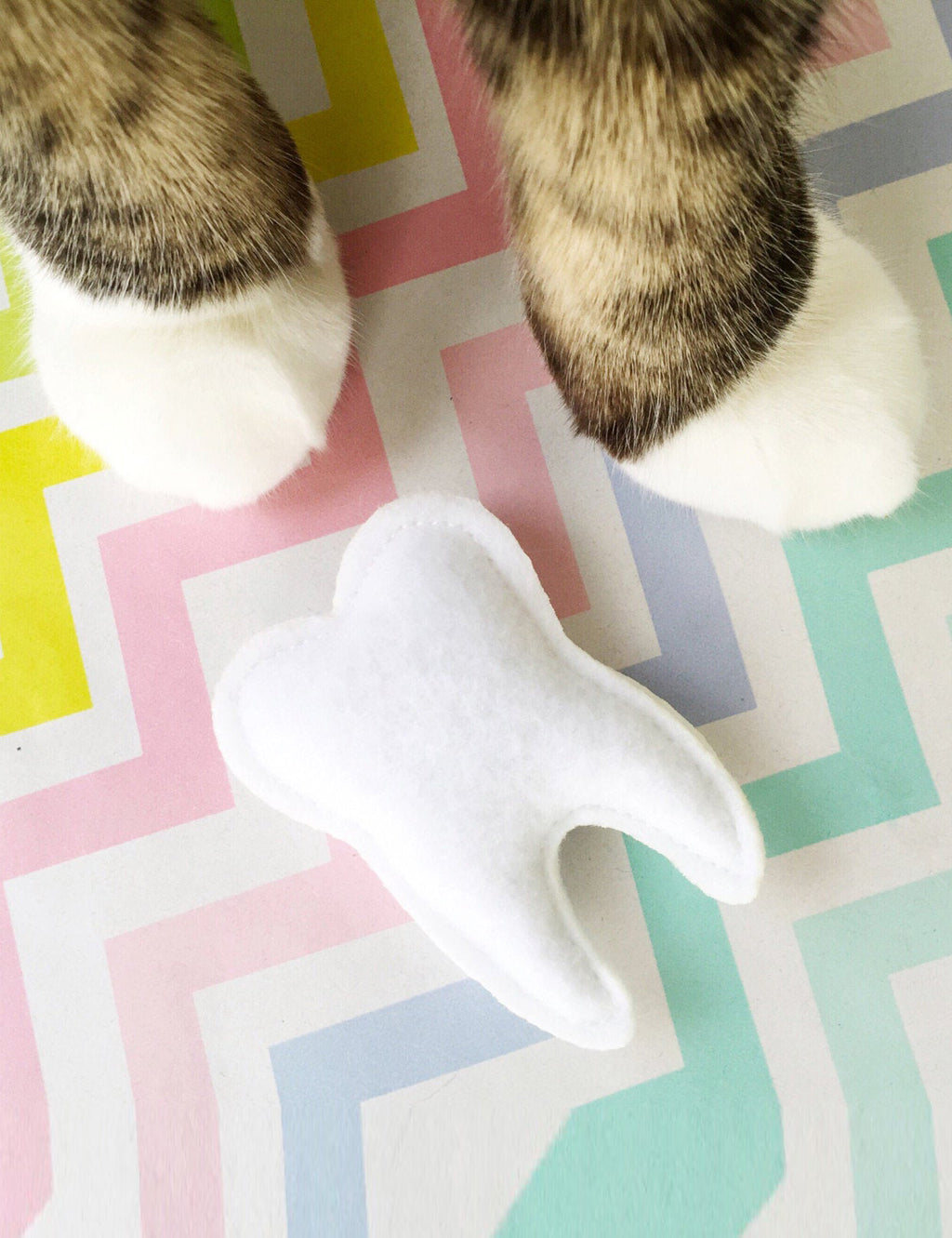 Tooth Cat Toy