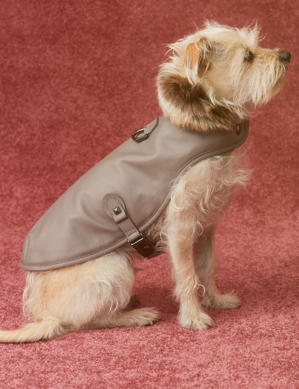 Leather Dog Jacket | Cloud Grey