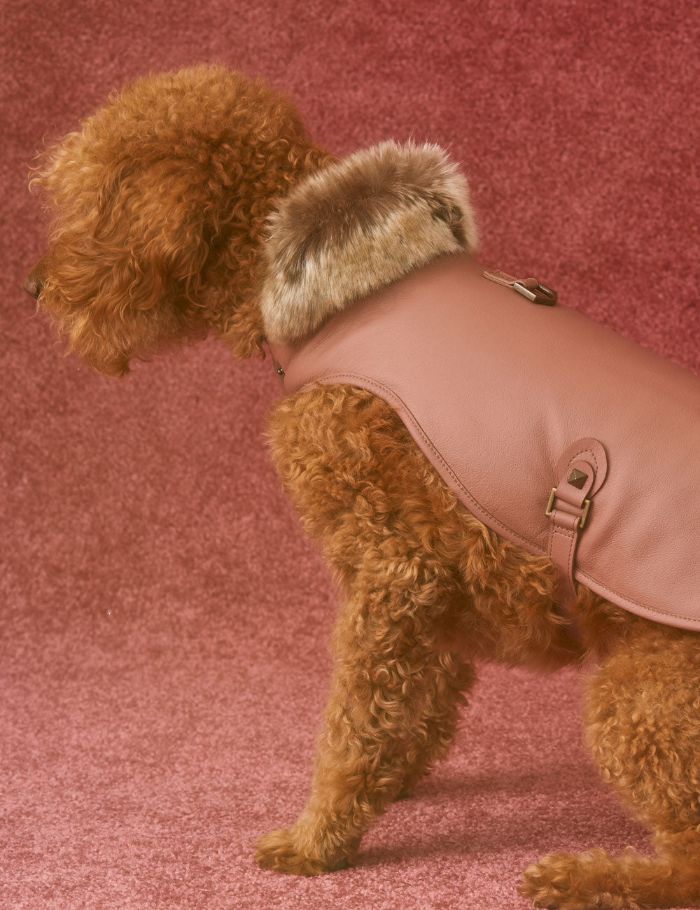 Leather Dog Jacket | Rose