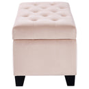 Jas Rectangular Storage Ottoman in Blush - sydneysfurniture