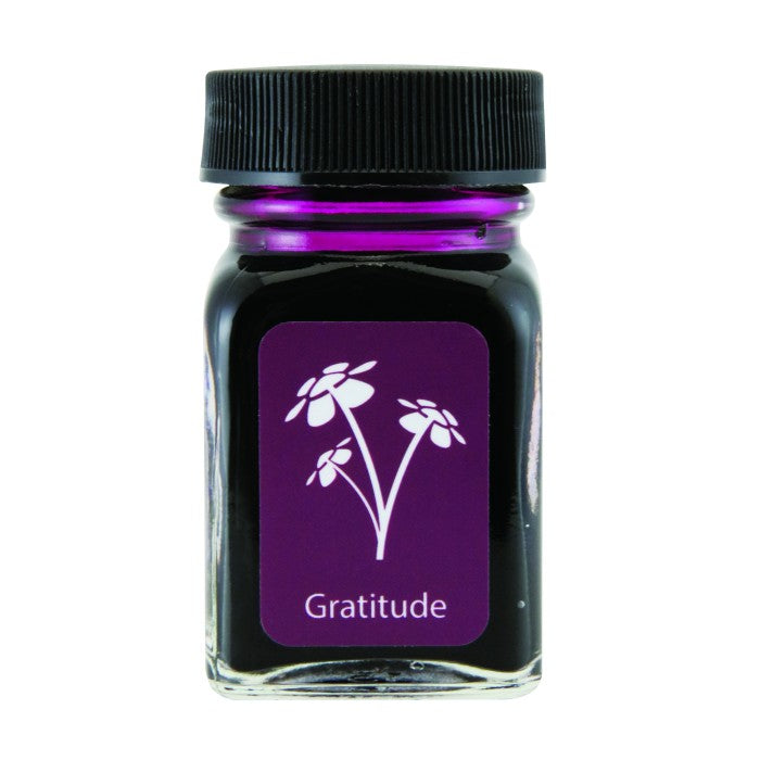 Monteverde Gratitude Magenta Ink - 30ml Bottle