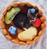 """Fruitcake Cat"" Katzenbett - CrazyCatmom"