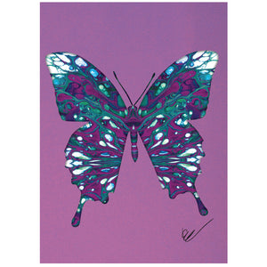 Abstract Butterfly Card 8 cards/9 env