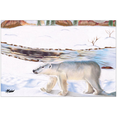 Polar Bear by Marvin