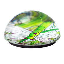 Dragonfly Cabochon Magnet