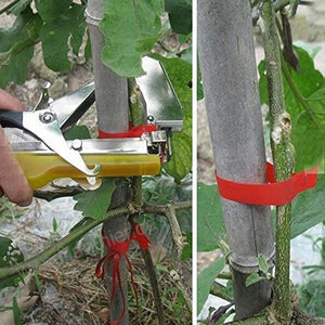 "<strong style=""color: #ff4100;""> TrellisClaw®</strong> Plant Upright Tying Tapetool"