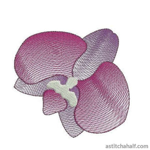 Orchid Flower Transparency - a-stitch-a-half