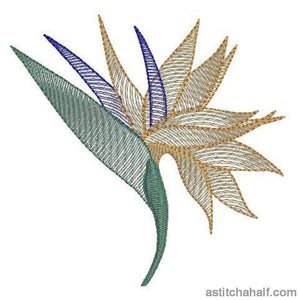 Strelitzia Flower Transparency Embroidery Fill