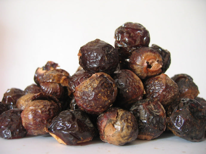 Soap Nuts:The Benefits & Uses of One Small Berry