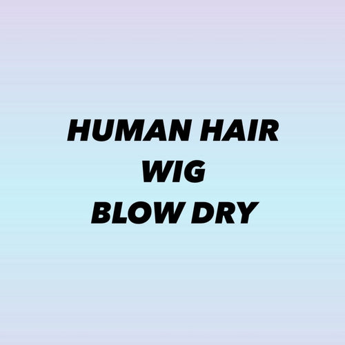 HUMAN HAIR WIG BLOW DRY