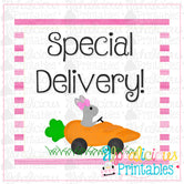 Special Delivery-Pink-Easter Printable Tags