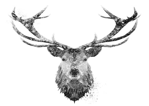 The Stag Black & White