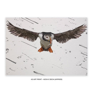 """Frank"" The Puffin (Grey Background) A3 Unframed Art Print - Andy Thomas Artworks"