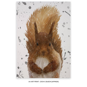 """Ellis"" The Red Squirrel (Grey Background) A4 Unframed Art Print - Andy Thomas Artworks"