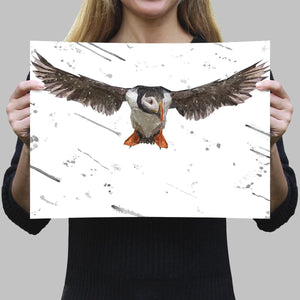 """Frank"" The Puffin (Grey Background) A4 Unframed Art Print - Andy Thomas Artworks"