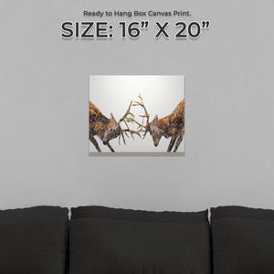 """The Showdown"" Rutting Stags Small Canvas Print - Andy Thomas Artworks"