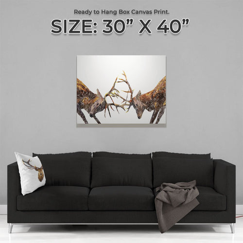 """The Showdown"" Rutting Stags Large Canvas Print"
