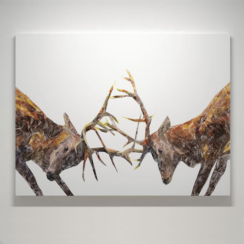 """The Showdown"" Rutting Stags Medium Canvas Print"