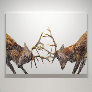 """The Showdown"" Rutting Stags Small Canvas Print"