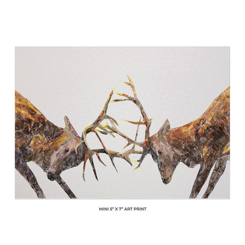 """The Showdown"" Rutting Stags 5x7 Mini Print"