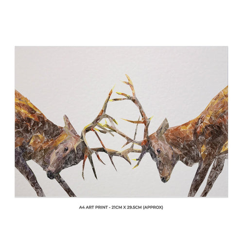 """The Showdown"" Rutting Stags A4 Unframed Art Print"