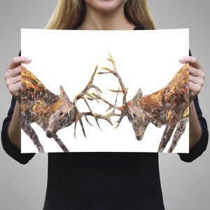"""The Showdown"" Rutting Stags A3 Unframed Art Print - Andy Thomas Artworks"