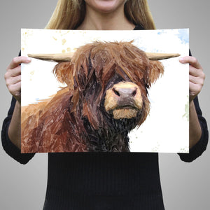 """Henry"" The Highland Bull A3 Unframed Art Print - Andy Thomas Artworks"