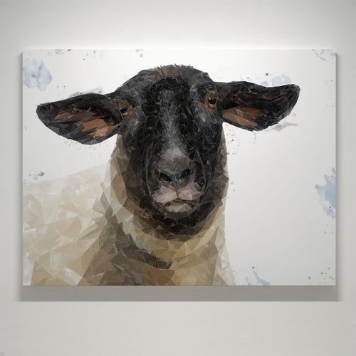 """The Suffolk"" Suffolk Sheep Small Canvas Print"