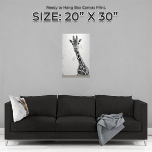 """George"" The Giraffe (B&W) Medium Canvas Print - Andy Thomas Artworks"