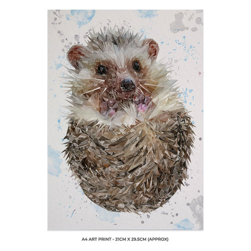 """Milton"" The Hedgehog A4 Unframed Art Print"