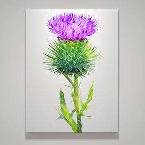 """The Thistle"" Medium Canvas Print - Andy Thomas Artworks"