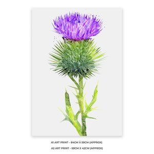 The Thistle (Portrait) A1 Unframed Art Print - Andy Thomas Artworks