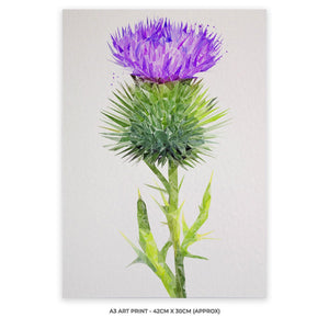 The Thistle (Portrait) A3 Unframed Art Print - Andy Thomas Artworks