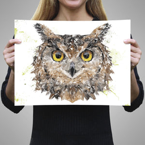 """Brown Owl"" A3 Unframed Art Print - Andy Thomas Artworks"