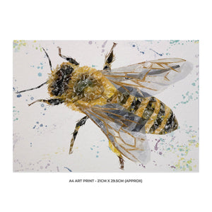 """The Honey Bee"" A4 Unframed Art Print - Andy Thomas Artworks"