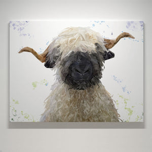 """Betty"" The Valais Blacknose Sheep Small Canvas Print - Andy Thomas Artworks"