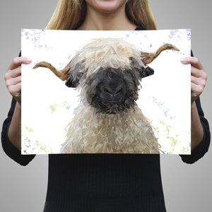 """Betty"" The Valais Blacknose Sheep A2 Unframed Art Print - Andy Thomas Artworks"