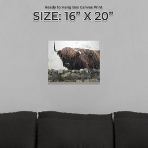 """Freya"" The Highland Cow from Applecross Small Canvas Print - Andy Thomas Artworks"