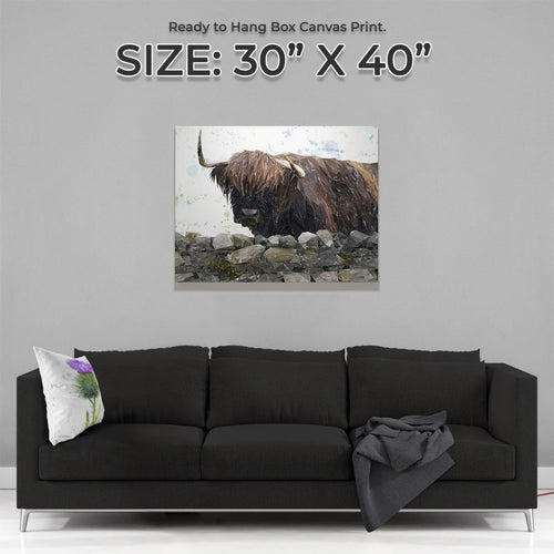 """Freya"" The Highland Cow from Applecross Large Canvas Print"