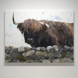 """Freya"" The Highland Cow from Applecross Large Canvas Print - Andy Thomas Artworks"
