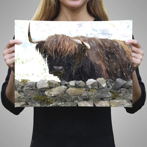 """Freya"" The Highland Cow from Applecross A1 Unframed Art Print"