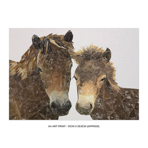 """The Exmoor Pair"" Emoor Ponies A4 Unframed Art Print - Andy Thomas Artworks"