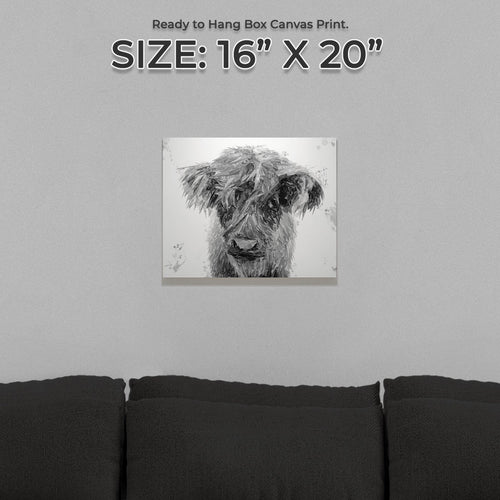 """Peeps"" The Highland Calf (B&W) Small Canvas Print"
