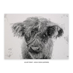 """Peeps"" The Highland Calf (B&W) A3 Unframed Art Print - Andy Thomas Artworks"