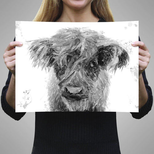"""Peeps"" The Highland Calf (B&W) A3 Unframed Art Print"